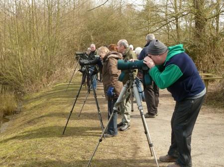Birdwatching at Sevenoaks