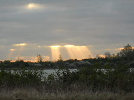 Sunrise over Cliffe Pools RSPB reserve