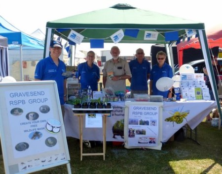 Gravesend RSPB crew at our stall at the Gravesend Regatta July 2015