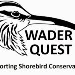 Wader Quest talk