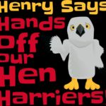 Hen Harrier Day 6th August - Rainham Marshes