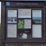 Cliffe Pools RSPB Reserve - an evening visit
