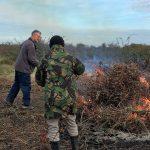 Hawthorns, bramble and bonfire