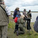 Group Trip to RSPB Cliffe Pools Reserve