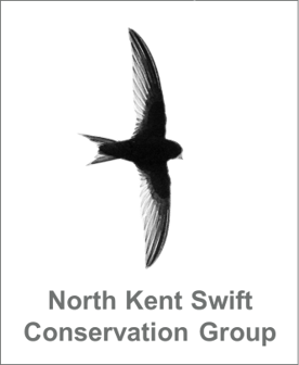 North Kent Swift Conservation Group logo