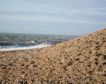Dungeness - Sunday 16th January
