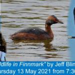 Reminder - Jeff Blincow talk this coming Thursday 12 May