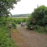 Trip Report – Tuesday 27th July – Lullingstone Country Park