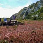 First outdoor trip to Samphire Hoe this Sunday