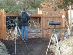 Millbrook - Big Garden Birdwatch - Day 2