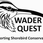 Wader Quest talk