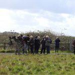 Group Trip to Rainham RSPB Reserve